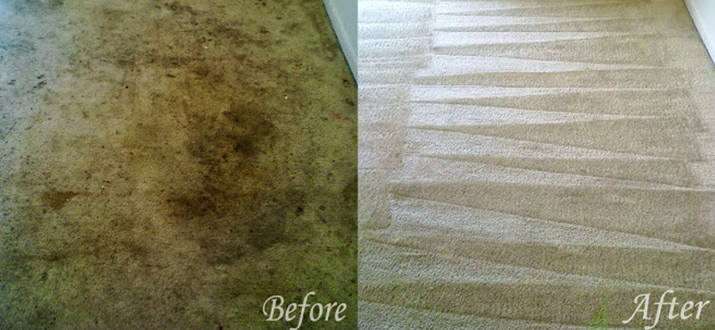 Adans Carpet Cleaning : Hiram, GA